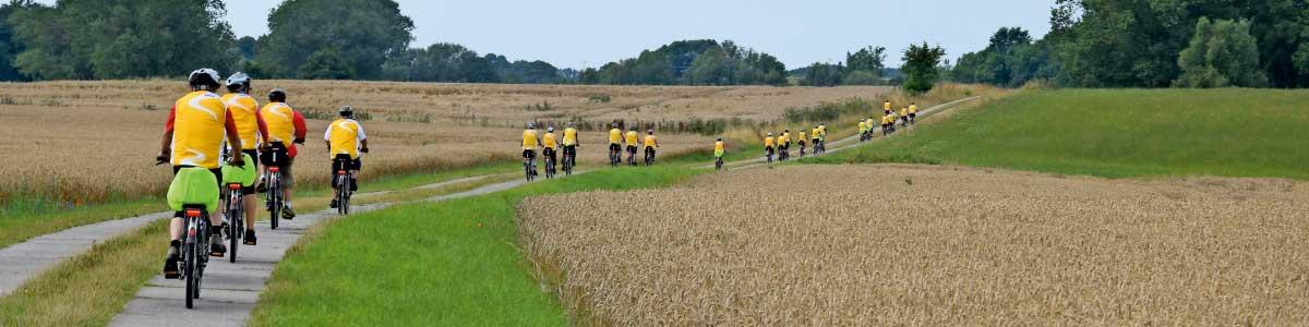 Groupe voyages activement FLYER vélo électrique